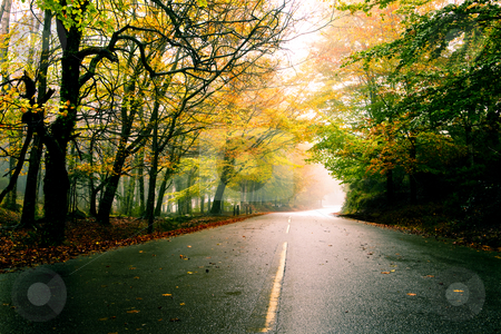 Beautiful road stock photo, Autumn landscape with a beautiful road with colored trees by ikostudio