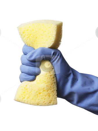 Cleaning  stock photo, Hand with blue protective rubber glove holding a yellow sponge by Stocksnapper 