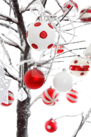 Christmas baubles ornaments decoration stock photo, Christmas baubles and ornaments hang from snow covered branches. by Leah-Anne Thompson