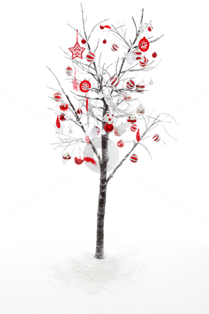 Decorated Christmas Tree stock photo, Snow covered branches and twigs of a deciduous tree is decorated with red and white Christmas baubles by Leah-Anne Thompson