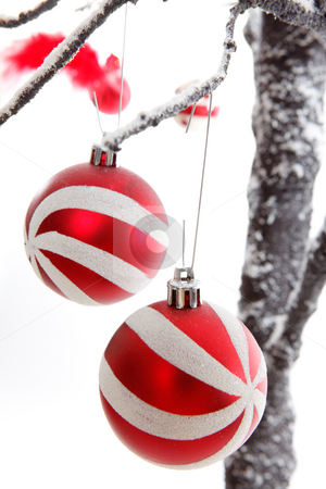 Christmas Decorations baubles stock photo, Pretty Christmas decorations hang from snow covered branches. by Leah-Anne Thompson