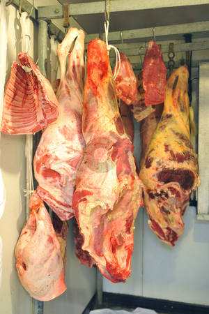 Refrigerator with meat stock photo, Refrigerator with red meat in a butcher shop by Bonzami Emmanuelle