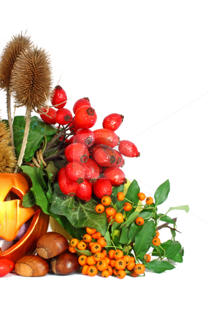Colors of autumn stock photo, Some colorful autumn fruits isolated on white by Borislav Marinic