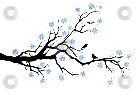Winter tree branch stock vector clipart, Beautiful winter tree with snowflakes and birds, vector background by Beata Kraus