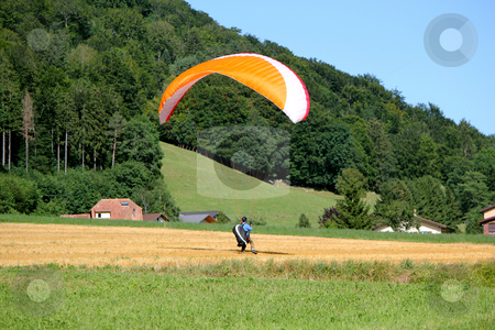 Paraglider landing in a field stock photo, Red and white paraglider landing in a yellow field in the campain by Elenaphotos21
