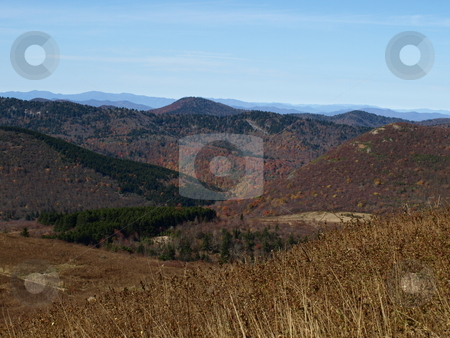 High Country stock photo, Along the trail in North Carolina. Views along the Art Loeb Trail. by Tim Markley
