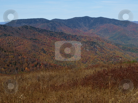 Fall  stock photo, Along the trail in North Carolina. Views along the Art Loeb Trail. by Tim Markley