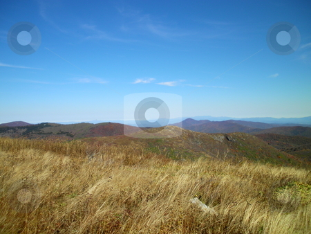 Tall grass stock photo, Along the trail in North Carolina. Views along the Art Loeb Trail. by Tim Markley