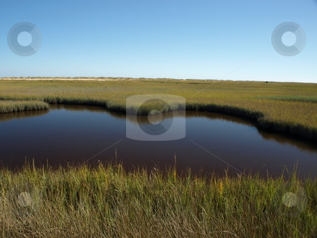 Marsh water stock photo, View of a marsh along the North Carolina Shore by Tim Markley
