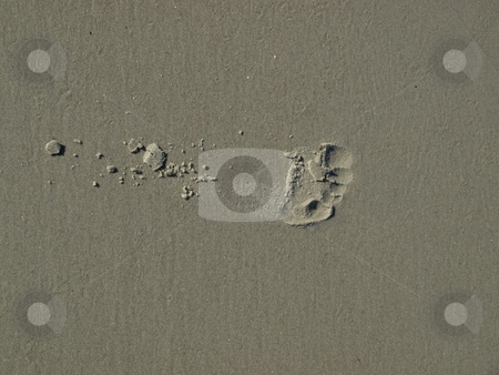Footprint in the sand stock photo, Footprint in the sand along the shore in North Carolina by Tim Markley