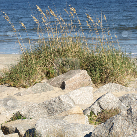 North Carolina Coast stock photo, Rocks and dunes along the carolina coast by Tim Markley
