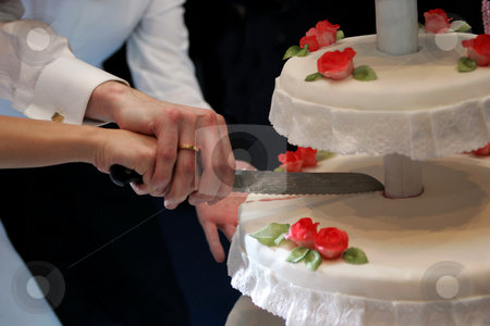 Cutting wedding cake stock photo, Hands of bride and groom cutting wedding cake at wedding reception. by Martin Crowdy