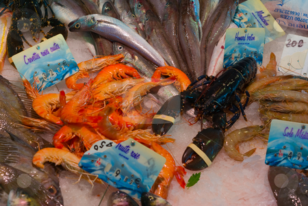 Meeresfr?chte - Seafood stock photo, Meeresfr?chte - Seafood by Wolfgang Heidasch