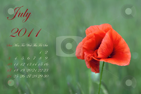 July 2011 stock photo, Page of 2011 calendar for July, with red poppy over green by Fabio Alcini