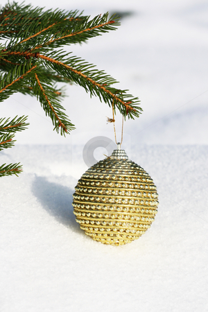Christmas tree stock photo, Christmas bauble on christmas tree by Viktor Thaut
