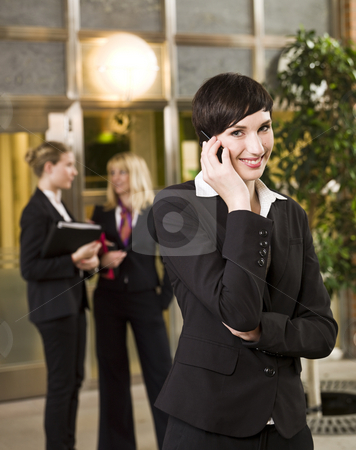 Businesswoman on the phone stock photo, Businesswoman on the phone by Anne-Louise Quarfoth