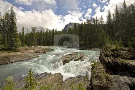 The Kicking Horse River stock photo, The Kicking Horse River, near Golden, British Columbia. by Mary Lane