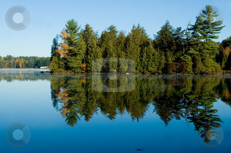 Lake with Pine Trees stock photo, Pine trees reflected in the calm clear waters of a country lake. by Mary Lane