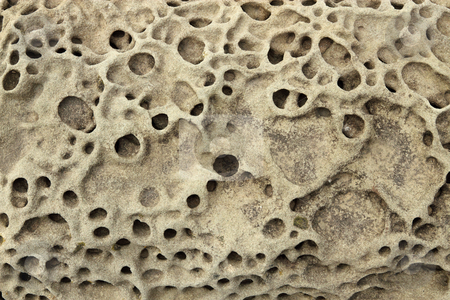 Rock erosion holes close up. stock photo, Rock erosion holes sea wall in Western-Super-Mare. by Stephen Rees