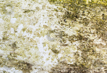 Weathered white paint on wood grunge background. stock photo, Weathered white paint on wood grunge background. by Stephen Rees