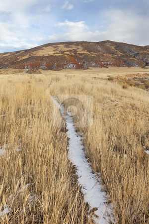 Cattle trail in a mountain valley stock photo, Cattle trail in Red Mountain Open Space in northern Colorado (Larimer County), fall scenery with dry grass and soem snow by Marek Uliasz