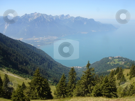 View of Montreux from the mountain stock photo, View of Montreux, Switzerland, and the lake of Geneva from the Alps mountain with its fir trees by beautiful weather by Elenaphotos21
