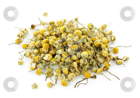 Medicinal chamomile herbs stock photo, Pile of medicinal yellow chamomile herb buds on white background by Elena Elisseeva