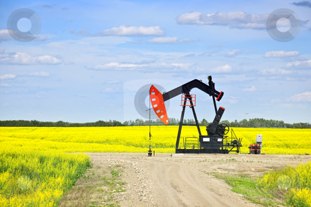 Nodding oil pump in prairies stock photo, Oil pumpjack or nodding horse pumping unit in Saskatchewan prairies, Canada by Elena Elisseeva