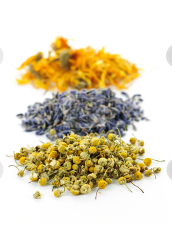 Dried medicinal herbs stock photo, Piles of dried medicinal herbs camomile, lavender, calendula on white background by Elena Elisseeva