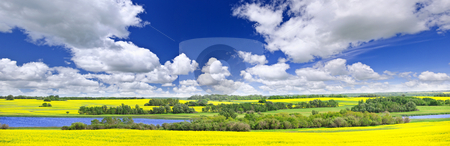 Prairie panorama in Saskatchewan, Canada stock photo, Panoramic landscape prairie view of canola field and lake in Saskatchewan, Canada by Elena Elisseeva