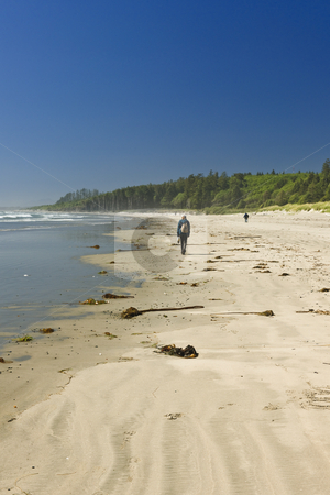 Sandy beach in Pacific Rim National Park in Canada stock photo, Hikers walking on Long Beach in Pacific Rim National park, Canada by Elena Elisseeva