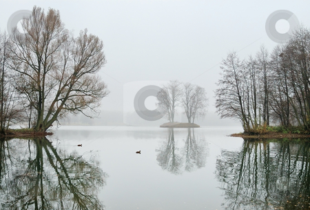 Lake in November stock photo, Ducks on the cold water of the lake in November. by Vladimir Blinov