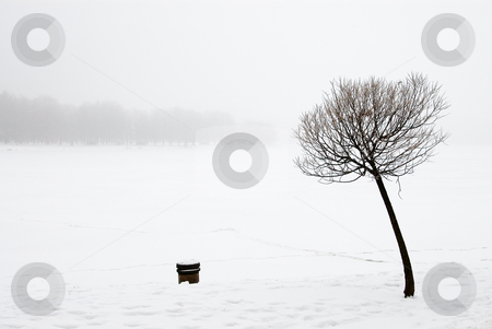 Winter landscape stock photo, Winter day, snow-covered riverbank, ice and trees. by Vladimir Blinov