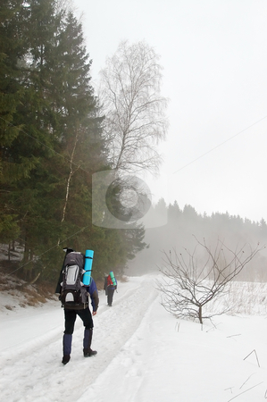 Tourists in the winter forest stock photo, Tourists walking along the road through the snowy woods in late winter. by Vladimir Blinov