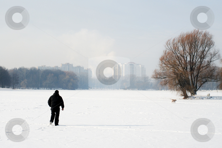 Winter walk with the dog. stock photo, The frosty winter day, a man walking with a dog. by Vladimir Blinov