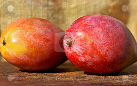 Two mangoes fruits. stock photo, Two mangoes fruits. by Inacio Pires