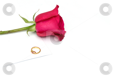 Card, ring and rose  a conept of valentine and engagement stock photo, Card, ring and rose  a conept of valentine and engagement by Arvind Balaraman