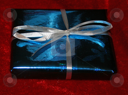 Gift stock photo, Small blue Christmas gift by Wanda Anthony