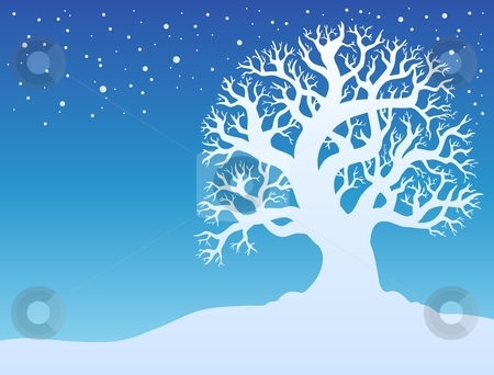 Winter tree with snow 2 stock vector clipart, Winter tree with snow 2 - vector illustration. by Klara Viskova
