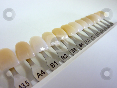 Denture Teeth Sizes http://cutcaster.com/photo/100914322-Dental-shade-guide/