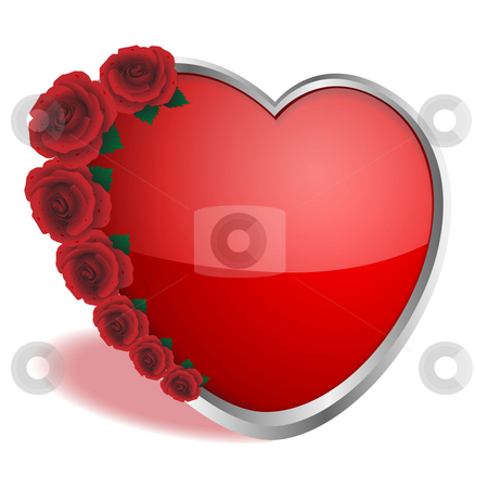 Heart and roses stock photo, Roses of red color and   heart on a white background by Alina Starchenko