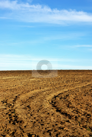Texture of cultivated field. stock photo, Texture of cultivated field and blue sky. by Inacio Pires
