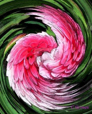 Flower Wings stock photo, Dahlia Plant turned into wings by Carol Grimes