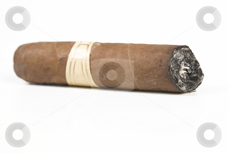 Havana brown cigar burned stock photo, Havana brown cigar burned on white background by Victor Oancea