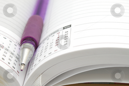 Ruled diary and a pen stock photo, Opened lined diary with a ball pen inside by Olena Pupirina