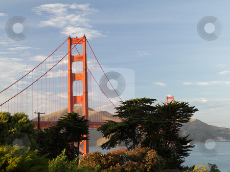 Golden Gate Bridge stock photo, View on Golden Gate Bridge in the evening, San-Francisco, California, USA by Olena Pupirina