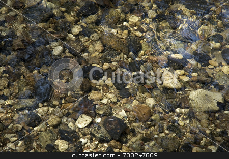 Underwater Riverstones stock photo,  by J. Gracey Stinson