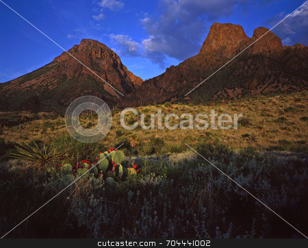 Chisos Mtns and Desert stock photo, The Chisos Mountains in Big Bend National Park, Texas. by Mike Norton