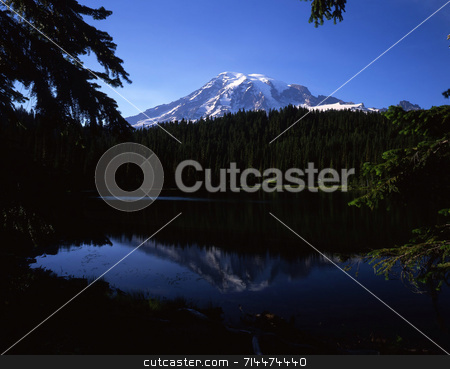 Mt. Rainier Horiz stock photo, Mt. Rainier in Mt. Rainier National Park located in Washington State. by Mike Norton