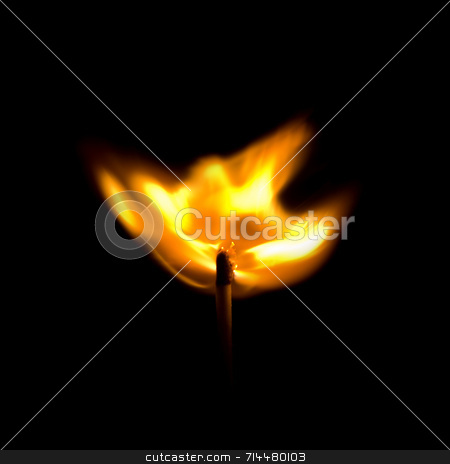 Match Explosion stock photo, A match that has just been lit, bursting into flame. by Daniel Wiedemann